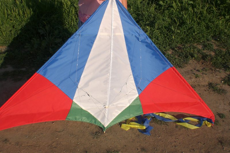 My group's hand-built delta stunter kite